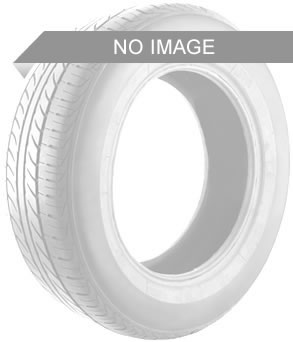 General Tire Altimax A/S 365 XL